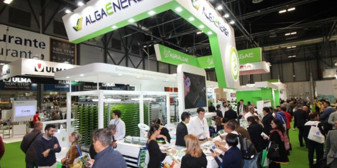 AlgaEnergy cumple sus expectativas en Fruit Attraction 2019