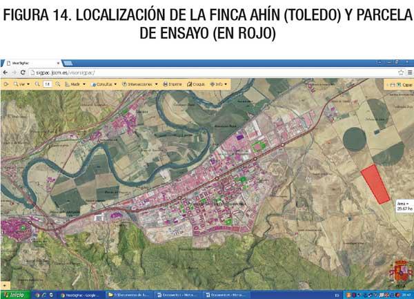 Localización de la finca Ahín (Toledo) y parcela de ensayo (en rojo)