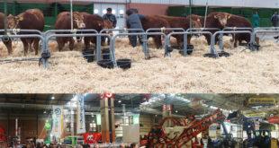 Abierta hasta el viernes en Zaragoza la Feria Internacional de la Producción Animal