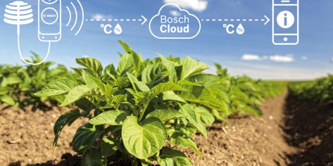 Bosch Cloud