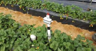 La utilización de dispositivos y tecnologías permite mejorar la eficiencia de los recursos hídricos