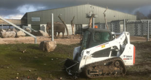 Bobcat T590 Blackpool Zoo