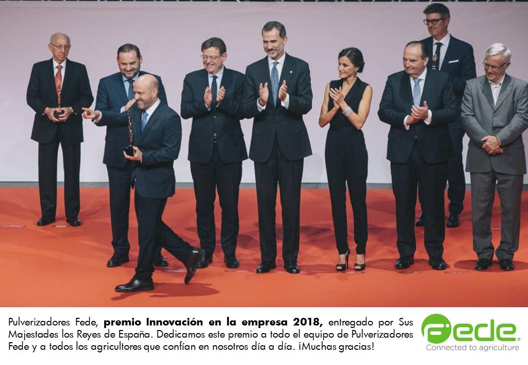 Premio Innovación Fede 2018