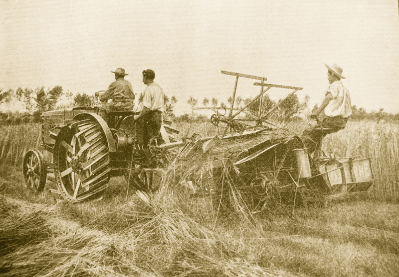 Fiat principios del siglo XX
