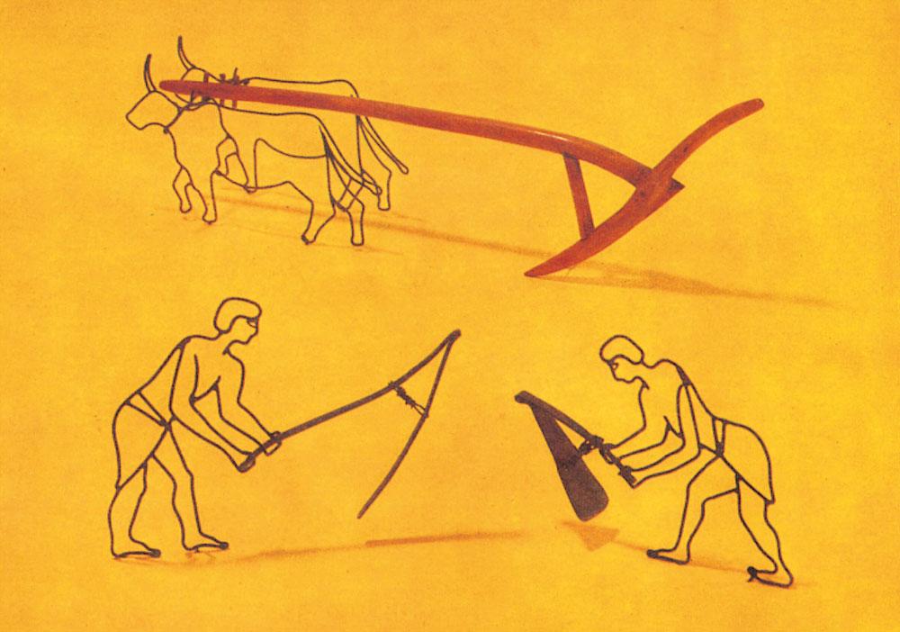 La Agricultura: desde el Neolítico hasta la Robotización
