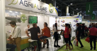stand de AlgaEnergy