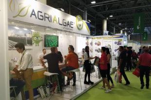 stand de AlgaEnergy