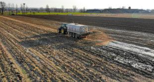 Fertilización italia
