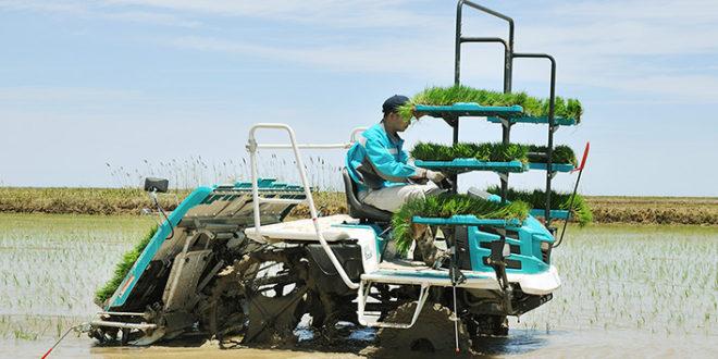 Kubota lanzará una plantadora de arroz autónoma
