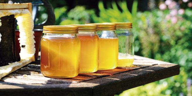 Asaja Aragón considera insuficiente la nueva normativa de etiquetado de la miel