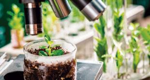 timacagro biocontrol