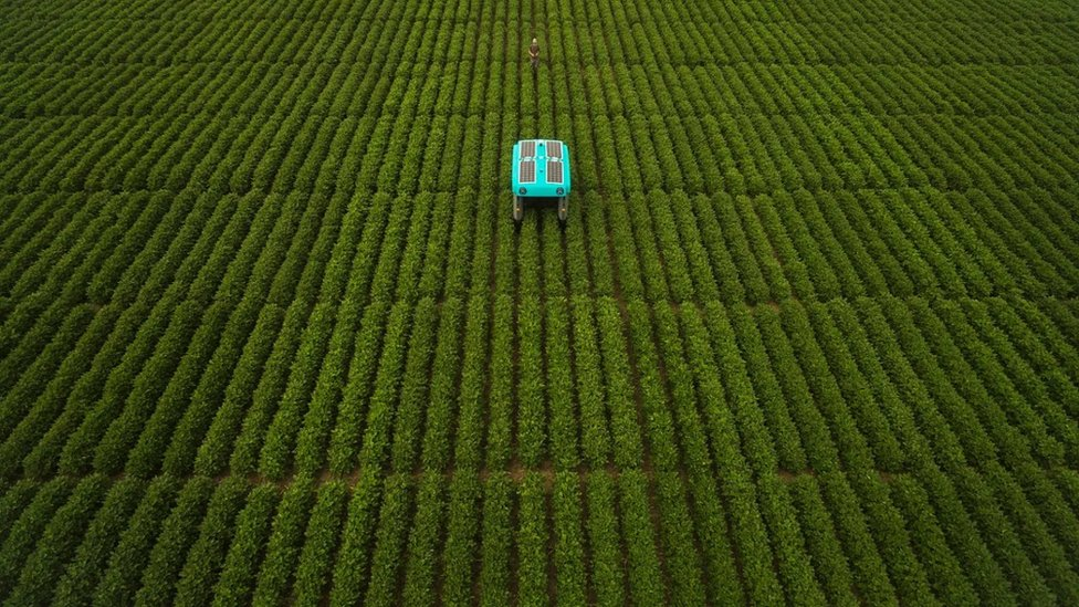 robots agrícolas autónomos