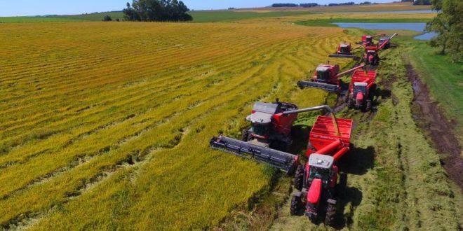 Las oportunidades de futuro del sector agrícola, según AGCO Finance